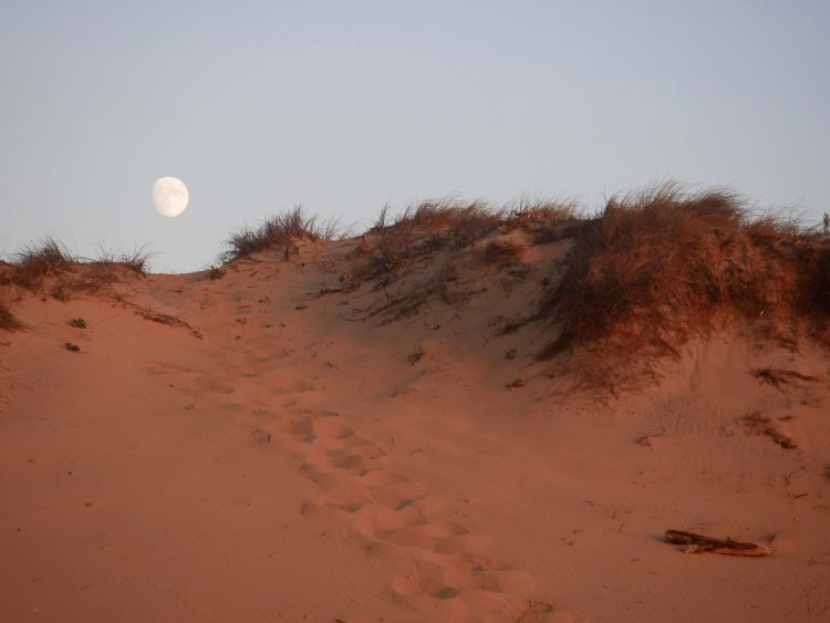 Footprints on the dune towards the moon in Portugal