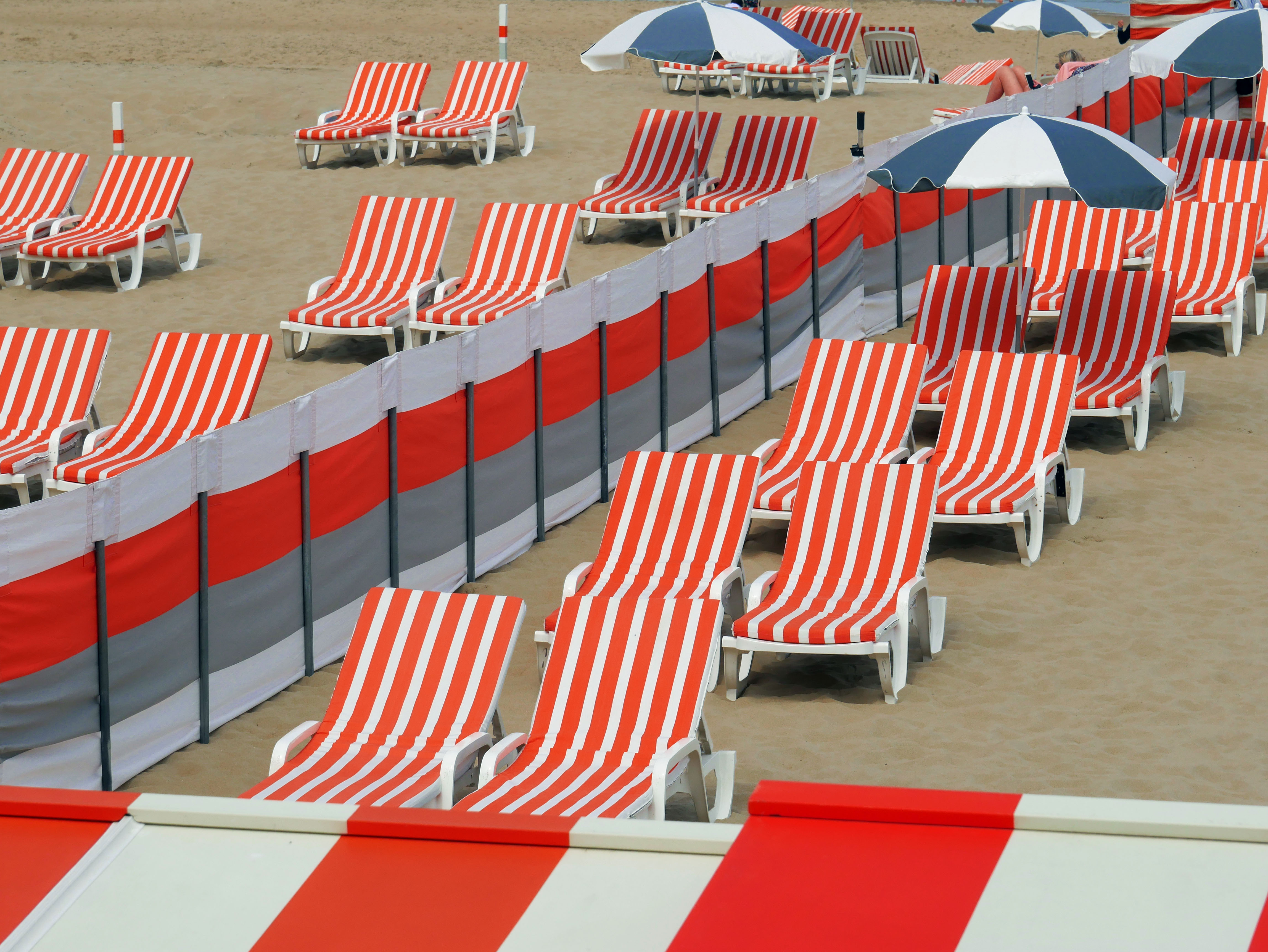 Rows of empty white and orange sunbeds on a beach in Belgium