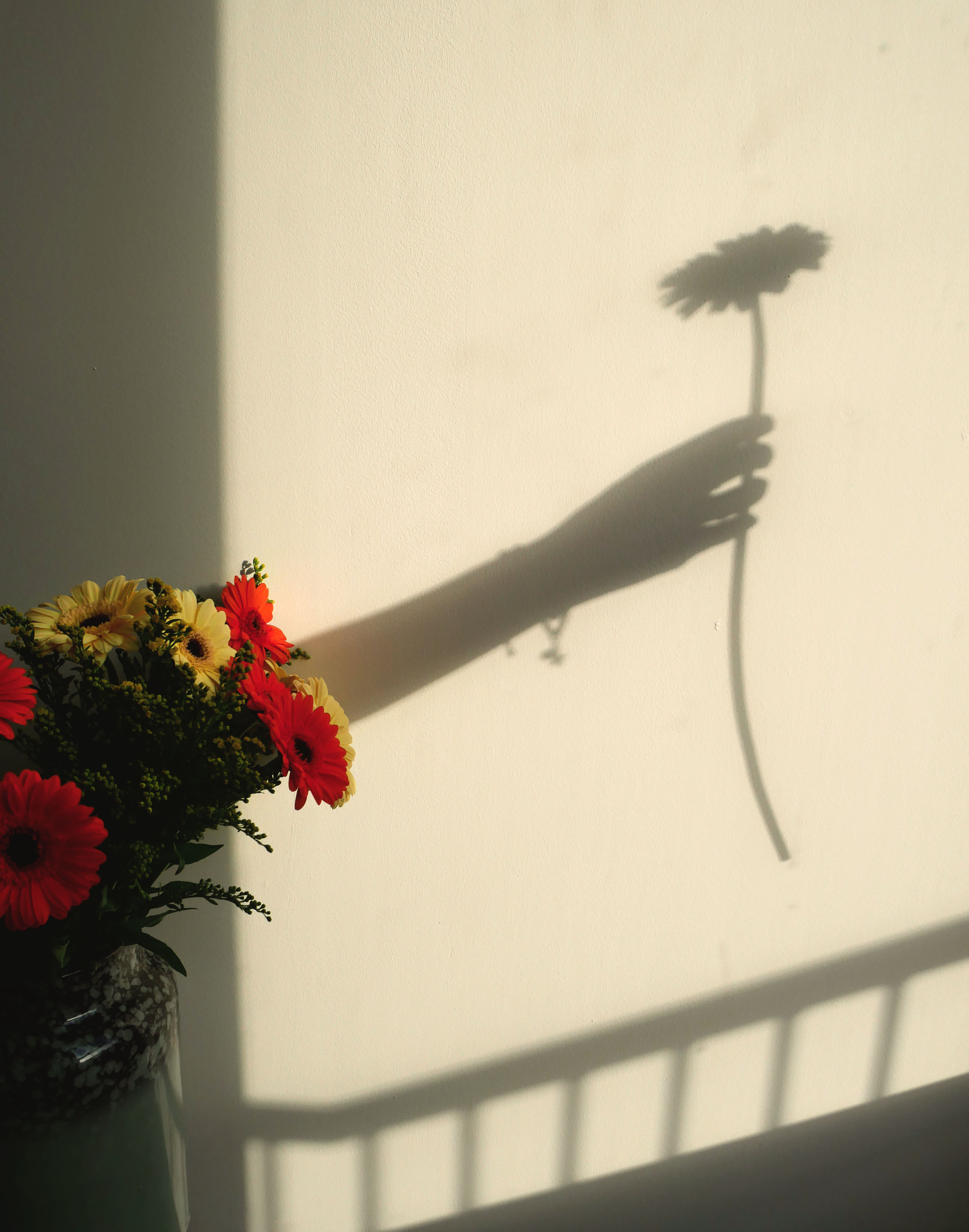 Shadow of an arm holding a flower next to a bunch of orange and yellow flowers, sunlight reflecting on a white wall.